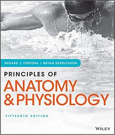 853 best anatomy and physiology copyright god images on pinterest principles of anatomy and physiology 15th edition by gerard j tortora isbn 13 fandeluxe Choice Image