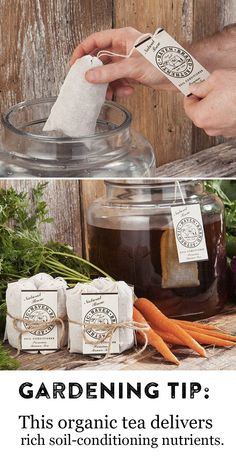 Want to grow stronger, bigger, more colorful plants and flowers? Discover how this brown brew packed with soil-enriching nutrients will help your garden.