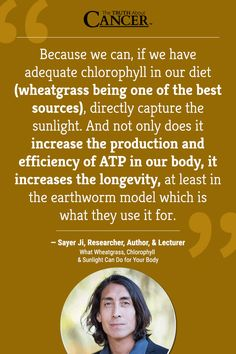What Wheatgrass, Chlorophyll & Sunlight Can Do for the Body (video)