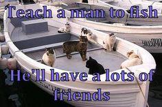 Feline Fishing Friends