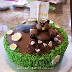 Cute groundhogs day cake