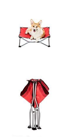 Carlson Small Portable Dog Cot In Red