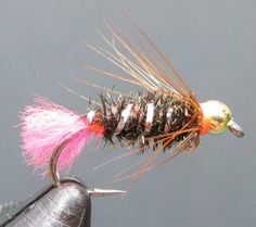 Evolutionary aspects of the modern nymph - TomSutcliffe - The Spirit of Fly Fishing