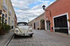 Coccinelle blanche dans les rues de Valladolid