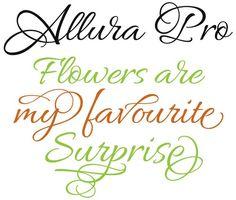 Rob Leuschke's Allura Pro font
