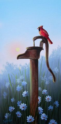 Red Cardinal on old fashioned artesian water pump in field of blue flowers on Misty morning.