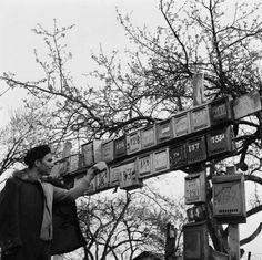 1963 - Le bidonville portugais de Champigny-sur-Marne - Paul Almasy - © Musée national de l'histoire et des cultures de l'immigration
