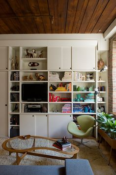 Combined media and bookcase storage organized by color.