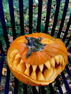 Pumpkin Pictures, Vegetables, Fruit, Food, Essen, Vegetable Recipes, Meals, Yemek, Veggies