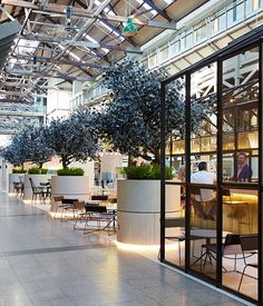 Ovolo Hotels open in Woolloomooloo and Darling Harbour :: Gourmet Traveller