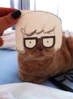 Tina the Cat
