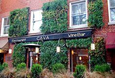 cava wine bar - Google Search