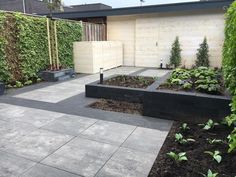 IMG_5592 (Medium) Driveway Design, Yard Design, Garden Yard Ideas, Garden Landscaping, Outside Living, Outdoor Living, Terrace Decor, House Landscape, Pergola Patio