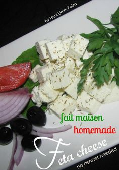 """The Teal Tadjine 
