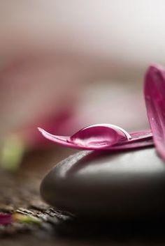 """"""" """"Confía en tu corazón. Valorar su intuición. Elija dejar de lado el miedo, y…"""
