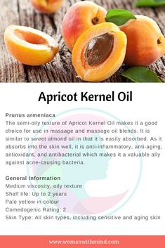 Apricot Kernel Oil — Woman With Mind Apricot Kernel Oil General Information and Beauty DIY Essential Oil Carrier Oils, Essential Oils For Skin, Essential Oil Uses, Apricot Oil Benefits, Natural Oils For Skin, Apricot Kernels, Healing Oils, Herbalism, Face Masks