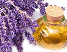 How to make homemade lavender oil. Lavender oil is one of the most used both in medicine and in cosmetics and perfumery for its multiple properties. Lavender oil can be used to treat. Home Remedies For Hair, Hair Loss Remedies, Natural Home Remedies, Herbal Remedies, Essential Oils For Fever, Essential Oil For Hemorrhoids, Pure Home, Lavender Benefits, Esential Oils
