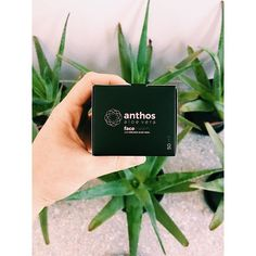 Natural hydrating face cream with organic aloe vera !!! # anthos # aloevera # organic # love # life # organicbeauty # skincare # facecream # greekcosmetics # greek # syros #