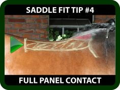 "Schleese Saddle Fit Tip #4 Full Panel Contact  Is your horse reluctant to bring his back up?    Are you worried that your saddle is creating pressure points?  Watch this informative video for some saddle fit tips on ""Full Panel Contact"" that may help you!  https://youtu.be/TC8sMS1qX-8?list=PLA35A02DBF310BB9D"