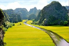 the beauty of Tam Coc in Ninh Binh