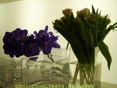 orchidee e tulipani