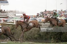 Water Pictures, Grand National, The Marauders, Thoroughbred, Horse Racing, Great Britain, Horses, Animals, Image