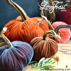 Velvet Pumpkins make the perfect gift! www.lovefeastshop.com