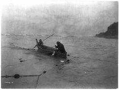 Title: Lifting the net--Quinault   Curtis, Edward S.,  c1913 June 16.  Two Quinault Indians in a canoe collecting fish from a net.