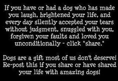 Well said for animal lovers.  I've been blessed.