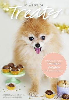 52 WEEKS OF TREATS // Healthy and Simple Recipes for Pets (ebook)