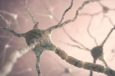 Scientists claim myelin production is crucial for learning new skills - Medical News Today