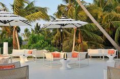 Hotels  Open  Lounge  With  White  Rattan  Arm  Chair  White  Gloss  Tube  Coffee  Table  White  Canopy  Below  Coconut  Trees  White  Floor  In  Niyama  Hotel  In  Maldives  Show  Amazing  Landscape Sweet Deluxe Hotel in Maldives with a Tailored Ambience Suited for the Modern Traveler