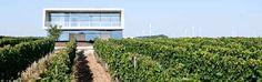 Claus Preisinger ~ Spitzenweine aus Österreichs äußerstem Osten - http://weinblog.belvini.de/claus-preisinger-burgenland