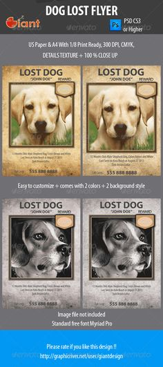 Dog Lost Flyer used for lost pets : cats and dogs, the photos used in the preview are not included in the download.  Comes with 4 PSD file 2 US Paper   2 A4 Paper Print ready 300 dpiCMYK 2 Colors and 2 background style  Image is not included on this download f