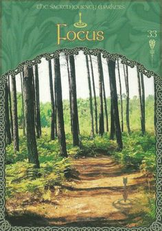 "The ""focus"" card from Colette Baron-Reid's The Wisdom of Avalon Oracle deck, was drawn to answer a reader's question about not getting to do the things that matter by using the power of focus."
