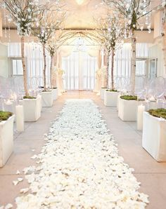 Ivory rose petals silk rose petals diy rose petal aisle runner flower girl petals petal toss wedding petals top 10 wedding color trends to inspire in 2020 Rose Petal Aisle, Silk Rose Petals, Flower Petals, Diy Flower, Flower Wall, Flower Bouquets, Flower Ideas, Flower Girls, Rooftop Wedding