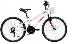 Promoção Bicicleta Aro 24 modelo Ceci branca personalizada Caloi Bicycle, Shopping, Templates, Bicycles, Bike, Bicycle Kick