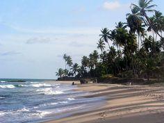 A 78 km de João Pessoa, na Paraíba, está o município de Baía da Traição, que reúne praias desertas, lagoas, cachoeiras e rios entre suas principais atrações ...