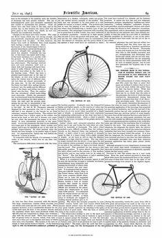Scientific American Volume 75 Number 04 (July 1... Scientific American, July 1, Numbers, Numeracy