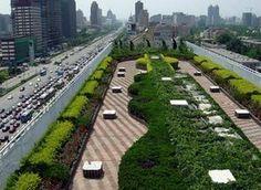 Зеленая крыша на вершине здания в Пекине