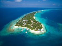 Beach Holiday, Holiday Travel, Bungalows, Kuredu Island, Boracay Philippines, Maldives Holidays, Snorkel, Maldives Travel, Picture Albums