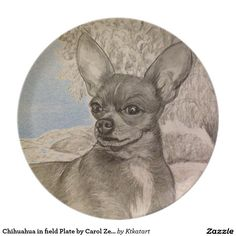 Chihuahua in field Plate by Carol Zeock