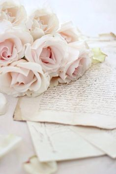 Wallpaper rose vintage ana rosa 67 new ideas Couleur Rose Pastel, Old Letters, Writing Letters, Book Flowers, Shabby Flowers, French Script, Deco Floral, Vintage Lettering, Rose Cottage