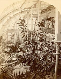 Interior of Alexander Mitchell's Mansion, Mid-1870s.