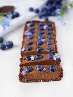 Raw Vegan Blueberry Chocolate Ganache Tart