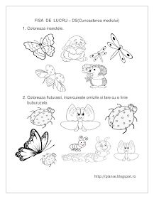 Fise de lucru - gradinita: FISE de lucru cu insecte - Cunoasterea mediului Toddler Learning Activities, Montessori, Bullet Journal, Kids, Blog, Tudor, Insects, Kids Learning Activities, Young Children