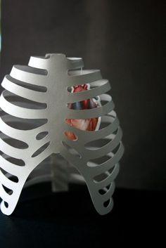 3D ribcage + heart