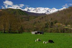 L'article Roadtrip en Ariège, terre sauvage protégée est apparu pour la première fois sur le site jet lag trips. Découverte de l'Ariège à l'occasion d'un roadtrip en terres sauvages. Un peu pour être coupée du monde même si on […] L'article Roadtrip en Ariège, terre sauvage protégée est apparu pour la première fois sur le site jet lag trips. Rafting, Stations De Ski, Jet Lag, Blog Voyage, Occasion, Mountains, Travel, Natural Park, First Time