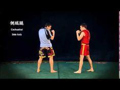 European Wushu Grading System 1st to 4th Duan Wushu Sanda - YouTube