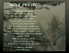 Walk with me in my solitude, howl with my joy! Native American Prayers, Native American Wisdom, All About Wolves, Great Quotes, Inspirational Quotes, Wolf Eyes, Stay Wild Moon Child, Wolf Quotes, Spirit Guides